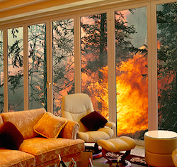 Bushfire Protection